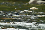 A river in motion.