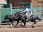 Jimmy Lee competes in the Ranch Horse Class at the Minden Ranch Rodeo on Saturday, July 21, 2012..Photo by Cathleen Allison