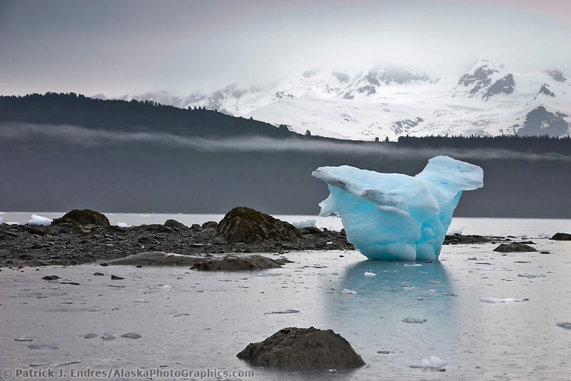 Beached icebergs from Bryn Mawr glacier, College Fjord, Prince William Sound, southcentral, Alaska.