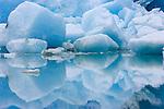 Glacial lagoon, Reid Inlet, Glacier Bay National Park and Preserve, Alaska