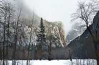 Yosemite National Park, California, breaking storm over El Capitan, winter valley landscape with  bere tree and snow