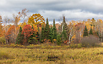 A cloudy autumn day in northern Wisconsin.