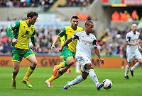 Swansea v Norwich, Liberty Stadium, Saturday 29th march 2014...<br /> <br /> <br /> Swansea's Wayne Routledge