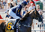 ARLINGTON HEIGHTS, IL - AUGUST 13: Coolmore #6, ridden by Colm O'Donoghue, during the post parade before the Beverly D. Stakes at Arlington International Racecourse on August 13, 2016 in Arlington Heights, Illinois. (Photo by Jon Durr/Eclipse Sportswire/Getty Images)
