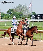 Southwest Lady winning at Delaware Park on 6/5/13