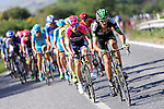 The peloton near the finish of Stage 6 of the 2015 Presidential Tour of Turkey running 184km from Denizli to Selcuk. 30th April 2015.<br /> Photo: Tour of Turkey/Mario Stiehl/www.newsfile.ie