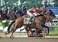 Victory Gallop (1995 b.h. by Cryptoclearance-Victorious Lil)
