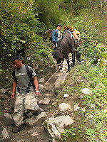 Hiking down a very rocky steep trail leading the pack mule in the mountains of Bhutan