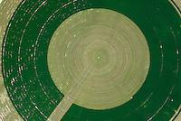 4415 / Feld : AMERIKA, VEREINIGTE STAATEN VON AMERIKA, UTAH,  (AMERICA, UNITED STATES OF AMERICA), 24.07.2006: kreisrundes Feld wird nach Bewaesserung und Wuchs geaerntet, Futtermittel, Gras, Ernte, Rund,