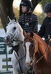 Hansen makes his way to Keeneland's main track in preparation for tomorrow's Bluegrass Stakes.  April 13, 2012.