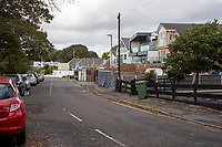 BNPS.co.uk (01202) 558833. <br /> Pic: CorinMesser/BNPS<br /> <br /> Pictured: Homes at Whitecliff Road in Poole, Dorset. <br /> <br /> Police have launched an investigation into allegations a wealthy homeowner has killed two 'magnificent' oak trees because they blocked their sea views.<br /> <br /> The 70ft tall mature specimens have had holes drilled into their trunks and poison poured inside in a 'disgraceful' act of sabotage. <br /> <br /> The two trees stand on the edge of a recreation ground between Poole Harbour, Dorset, and a cluster of luxury homes that sell for between £2m to £3m.