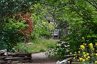 California native plant garden in Regional Parks Botanic Garden, Berkeley, California