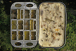 Fishermans Fly Box. Trout fishing on the river Test Hampshire England.  1985, 1980s UK