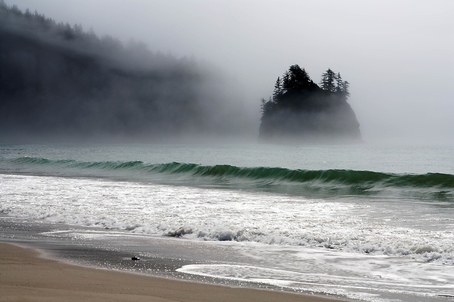 Sea stack on Washington Coast in fog, near Toleak Point, Olympic National Park, Washington, USA