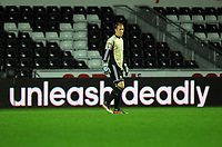 Pictured: Goalkeeper Gerhard Tremmel of Swansea. Tuesday 28 August 2012<br /> Re: Capital One Cup game, Swansea City FC v Barnsley at the Liberty Stadium, south Wales.