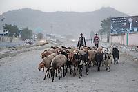 Kabul street scene. 7-9-10 Boys herd goats down the Darulamen Road.