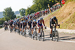 The peloton during Stage 16 of La Vuelta d'Espana 2021, running 180km from Laredo to Santa Cruz de Bezana, Spain. 31st August 2021.     <br /> Picture: Luis Angel Gomez/Photogomezsport   Cyclefile<br /> <br /> All photos usage must carry mandatory copyright credit (© Cyclefile   Luis Angel Gomez/Photogomezsport)