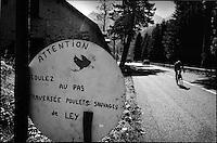 Europe/France/Aquitaine/64/Pyrénées-Atlantiques/ Béarn:Dans la descente du Col de l'Aubisque cycliste et poulets sauvages