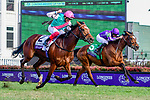 November 3, 2018: Enable #2, ridden by Frankie Dettori, wins the Longines Breeders' Cup Turf on Breeders' Cup World Championship Saturday at Churchill Downs on November 3, 2018 in Louisville, Kentucky. Jessica Morgan/Eclipse Sportswire/CSM
