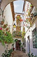 Spain. Cordoba. Calleja de las Flores. The Juderia