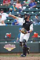 Winston-Salem Dash catcher Nate Nolan (15) on defense against the Salem Red Sox at BB&T Ballpark on April 22, 2018 in Winston-Salem, North Carolina.  The Red Sox defeated the Dash 6-4 in 10 innings.  (Brian Westerholt/Four Seam Images)