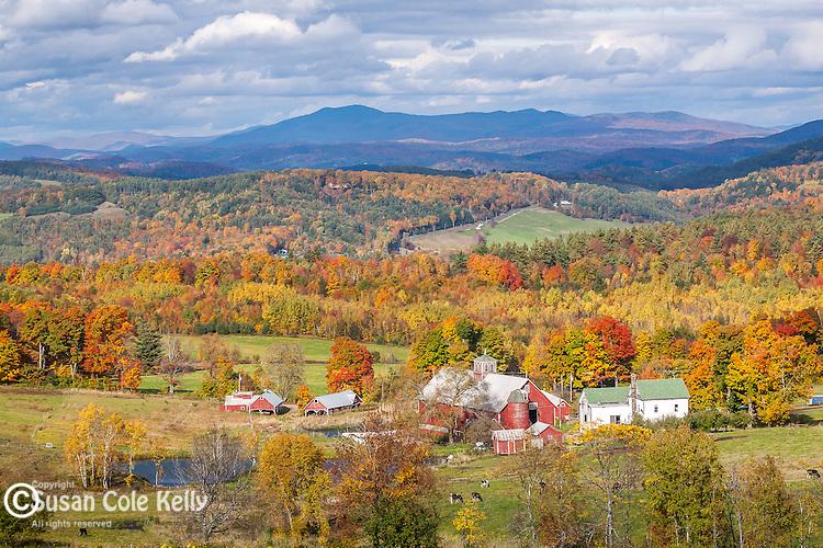 Autumn farmland in Barnet, Northeast Kingdom, VT
