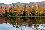 Shadow Lake during peak fall foliage, White Montains National Forest Lincoln, New Hampshire