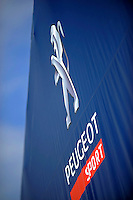 Detail: #07 (P1) Team Peugot Total 908 HDI/FAP, Marc Gene, Alexander Werz & Anthony Davidson