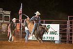 SEBRA - Chesterfield, VA - 8.29.2014 - Bulls & Action