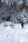 Snowshoer crossing the snow covered / frozen Little River along North Twin Trail during the winter months in the White Mountains, New Hampshire USA