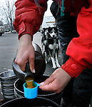 SLEDDOGS_6_cd.Lander,Wyoming--1/28/06--5:07:12 PM-.Robin Boulding, of Rock Crossing Tanana River, Alaska, prepares a mixture of proteins and vitamins to be added to the dog's nightly meal. Boulding's husband, Charlie, is the musher in the race and Robin helps to manage him and takes care of the dogs. .**This is the send race in the International Pedigree Stage Stop Sled Dog Race that started at Louie Lake, near Lander at 9:00 am.  The mushers were racing for a total of 48 miles..Chris Detrick/Salt Lake Tribune.