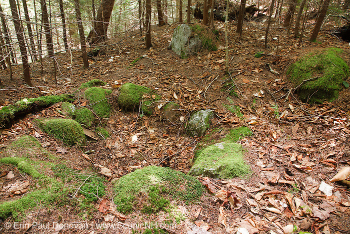 Remnants of possibly a very old fire ring in the area of Camp 7 along the East Branch & Lincoln Railroad in Lincoln, New Hampshire. This was a logging Railroad which operated from 1893-1948.