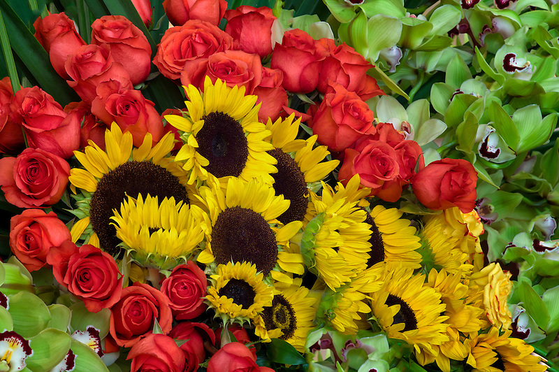 Flower display of sunflowers,roses and orchids.