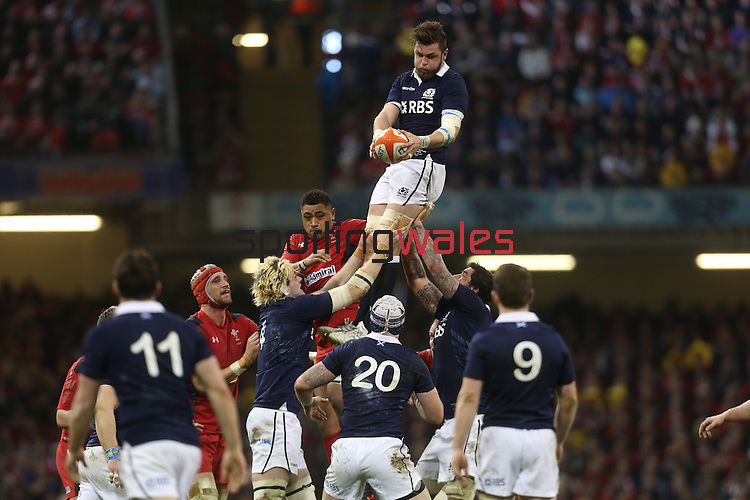 Scotland flanker Ryan Wilson takes the line out ball.<br /> RBS 6 Nations 2014<br /> Wales v Scotland<br /> Millennium Stadium<br /> <br /> 15.03.14<br /> <br /> ©Steve Pope-SPORTINGWALES