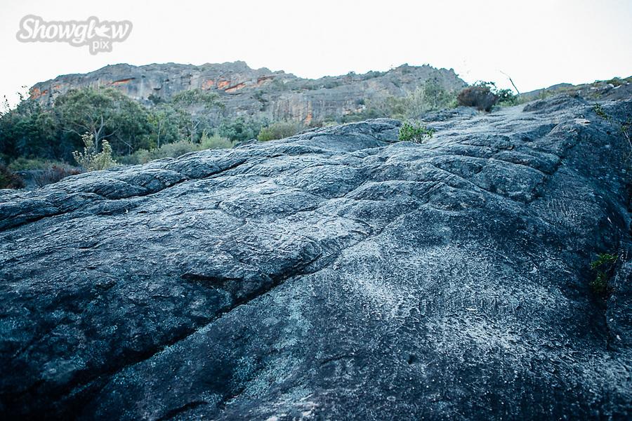 Image Ref: CA738<br /> Location: Mt Stapylton, The Grampians<br /> Date of Shot: 27.01.19