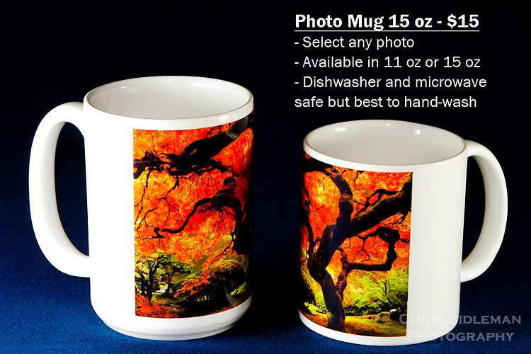 """Coffee Mug 15oz White - Have any photo from Chris Bidleman Photography collection on your cup.  Available in 11oz or black or white mug too.<br /> <br /> To order, select your photo from the library, pick the """"buy"""" button, and go to the """"products"""" tab to select your size and color."""
