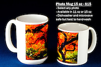"Coffee Mug 15oz White - Have any photo from Chris Bidleman Photography collection on your cup.  Available in 11oz or black or white mug too.<br /> <br /> To order, select your photo from the library, pick the ""buy"" button, and go to the ""products"" tab to select your size and color."