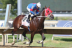 August 29, 2015. Social Inclusion, Roberto Alvarado Jr. up, wins the 5th race on Smarty Jones Stakes day, an allowance optional claiming event for three-year-olds and upward, one mile and 1/16 at Parx racing in Bensalem, PA. Trainer is Carlos Guerrero. (Joan Fairman Kanes/ESW/CSM)