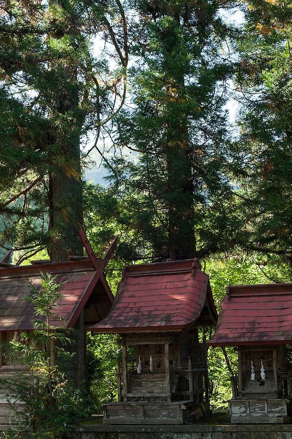An old shrine, tucked among leafy trees, near Nobushina, Nagano, Japan, seems almost forgotten.