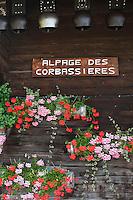 Europe/France/Rhône-Alpes/74/Haute-Savoie/La Clusaz: Détail du Chalet de l'Alpage de Corbassière ou Marie-Louise Donzel  prépare son reblochon-fermier