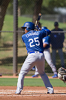 Los Angeles Dodgers catcher Jair Camargo (25) at bat during an Instructional League game against the Chicago White Sox on September 30, 2017 at Camelback Ranch in Glendale, Arizona. (Zachary Lucy/Four Seam Images)