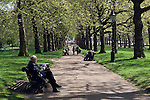 Great Britain, England, London: Green Park in spring