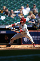 Brady Harlan (21) of the Oklahoma Sooners lays down a bunt against the Missouri Tigers in game four of the 2020 Shriners Hospitals for Children College Classic at Minute Maid Park on February 29, 2020 in Houston, Texas. The Tigers defeated the Sooners 8-7. (Brian Westerholt/Four Seam Images)