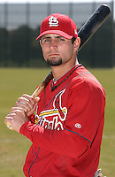 March 19, 2010:  Pete Kozma of the St. Louis Cardinals organization during Spring Training at the Roger Dean Stadium Complex in Jupiter, FL.  Photo By Mike Janes/Four Seam Images