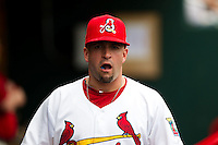 Nick Derba (31) of the Springfield Cardinals chews gum in the dugout during a game against the Arkansas Travelers on May 10, 2011 at Hammons Field in Springfield, Missouri.  Photo By David Welker/Four Seam Images.