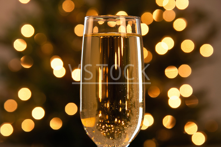 USA, Illinois, Metamora, Champagne in glass with defocused Christmas tree in background