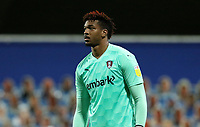 Jamal Blackman of Rotherham United during Queens Park Rangers vs Rotherham United, Sky Bet EFL Championship Football at The Kiyan Prince Foundation Stadium on 24th November 2020