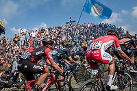 peloton up the infamous Muur van Geraardsbergen (1100m/7.6%) that is back in the parcours after a 5 year hiatus<br /> <br /> 101th Ronde Van Vlaanderen 2017 (1.UWT)<br /> 1day race: Antwerp › Oudenaarde - BEL (260km)