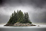 Islet with fir (Pseudotsuga sp.) and spruce (Picea sp.), Glacier Bay National Park and Preserve, Alaska, USA<br /> Canon EOS 5DS R, EF100-400mm f/4.5-5.6L IS II USM lens, f/5 for 1/2500 second, ISO 2000