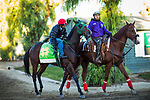 ARCADIA, CA - OCTOBER 22: Bolt d'Oro and his jockey Corey Nakatani head to the track for a workout at Santa Anita Park on October 22, 2017 in Arcadia, California. (Photo by Alex Evers/Eclipse Sportswire/Getty Images)
